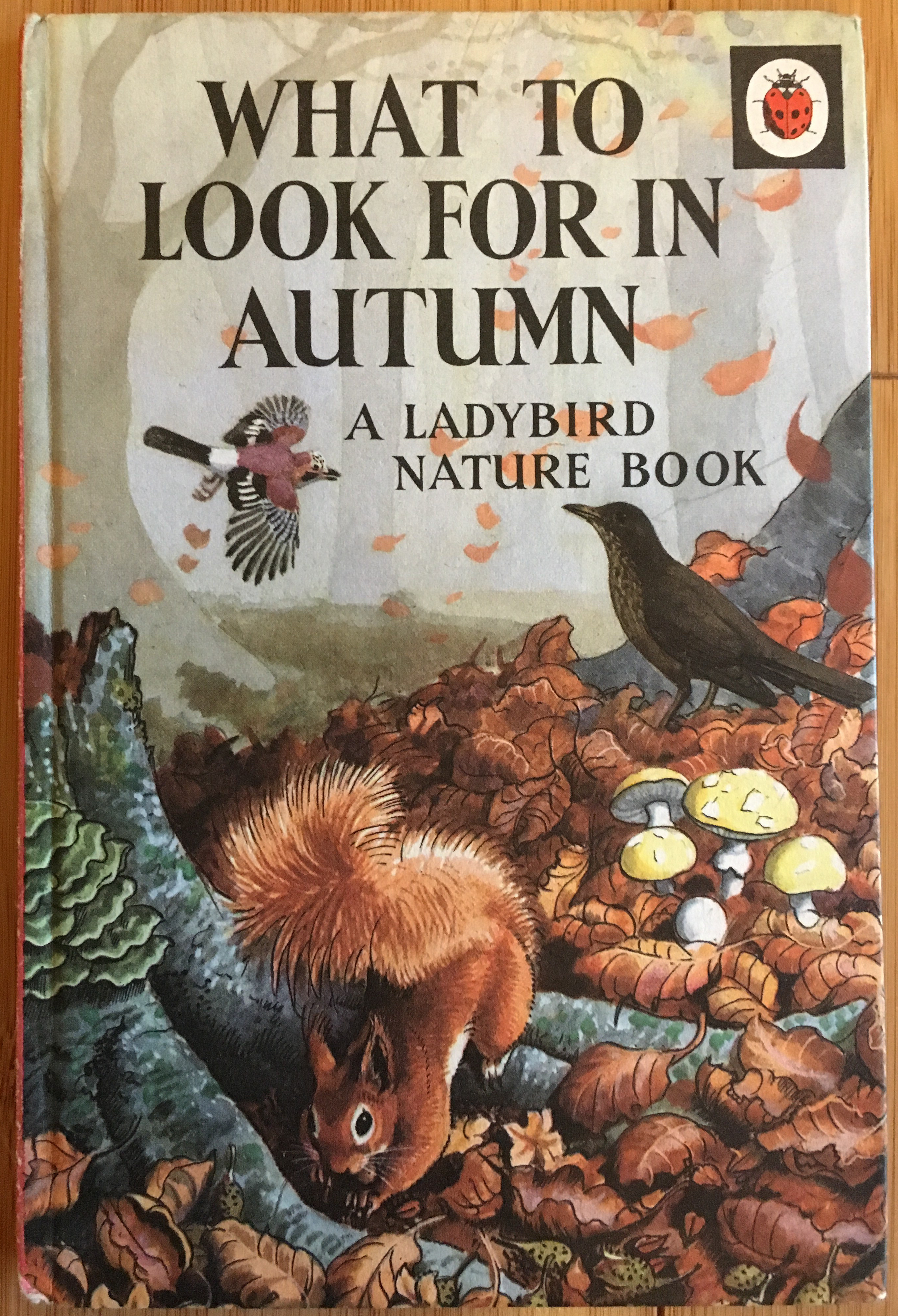 A copy of the book What to Look For In Autumn, a Ladybird Nature Book by E L Grant Watson and C F Tunnicliffe