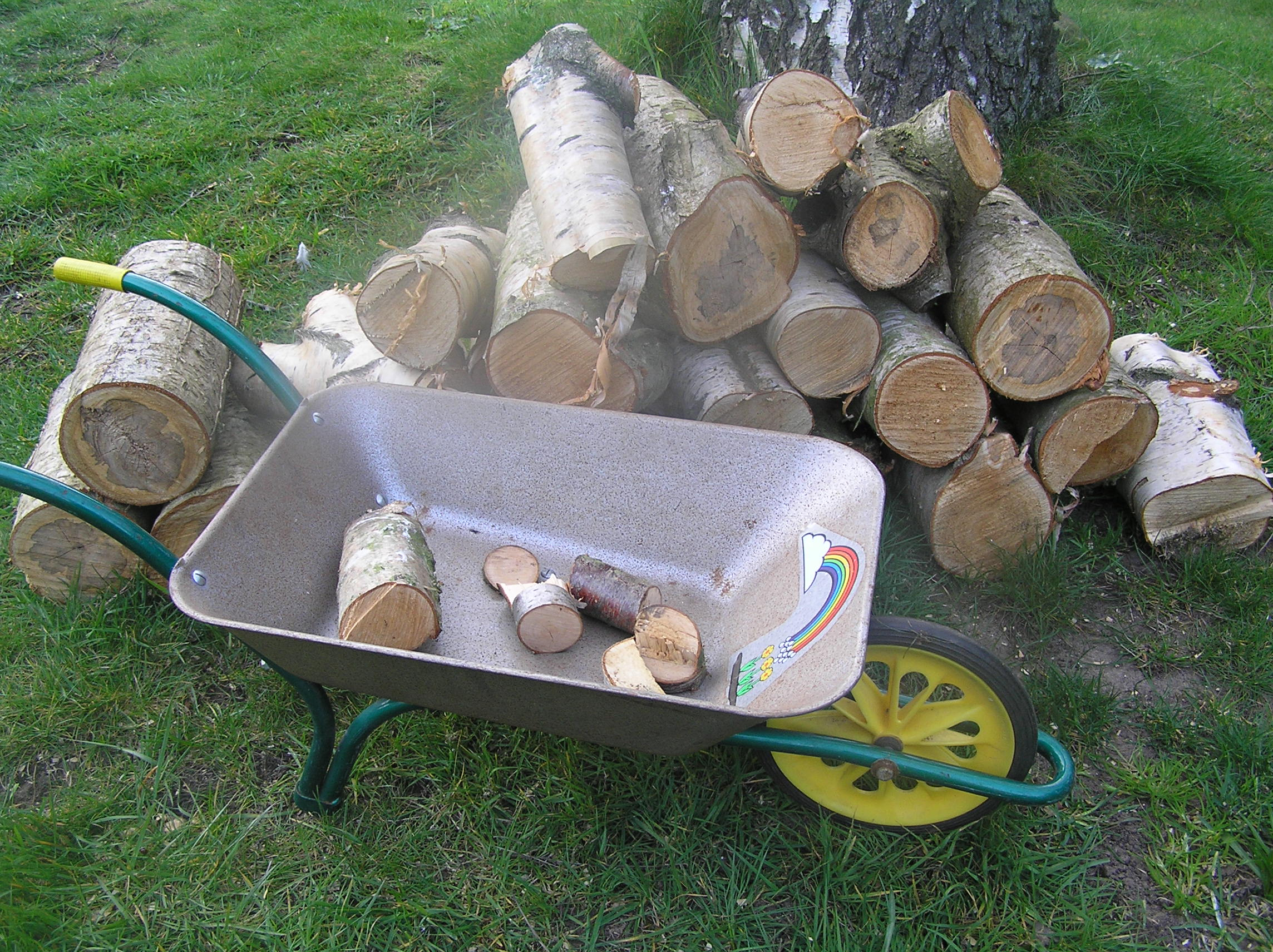 A child's wheelbarrow, half full of logs, is pictured in a garden next to a pile of smaller logs
