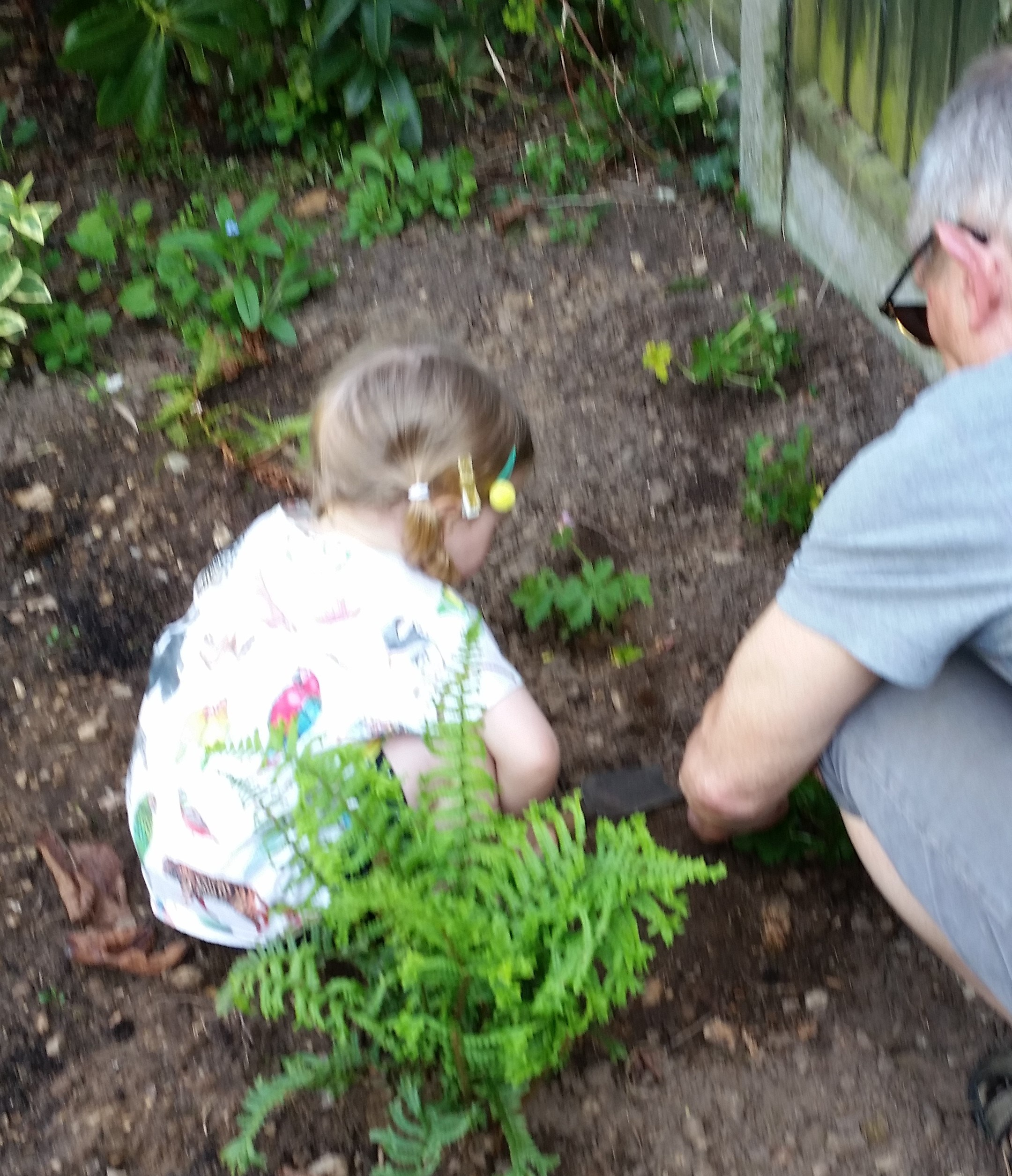 A young child squats in a flower bed with an adult as they undertake a gardening activity together