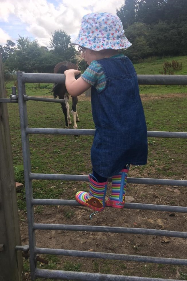 A child climbing up the rungs of a metal gate, which leads to a horse paddock. She is using it like a ladder.