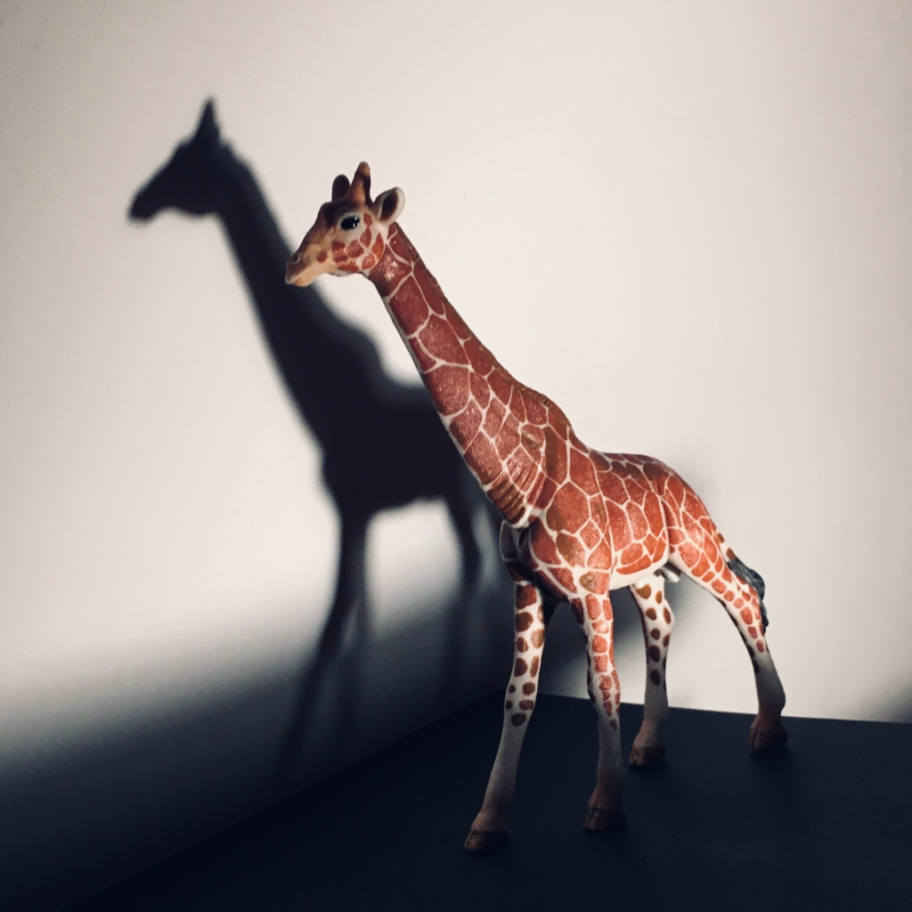 A toy giraffe stands next to a wall with its shadow or silhouette shown behind it