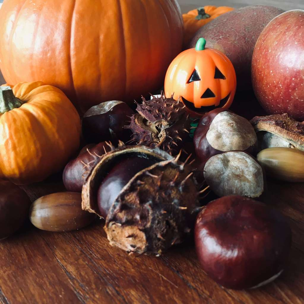 A large amount of seasonal produce if shown – pumpkins, conkers, acorns, potatoes and apples. Along with a toy Halloween pumpkin