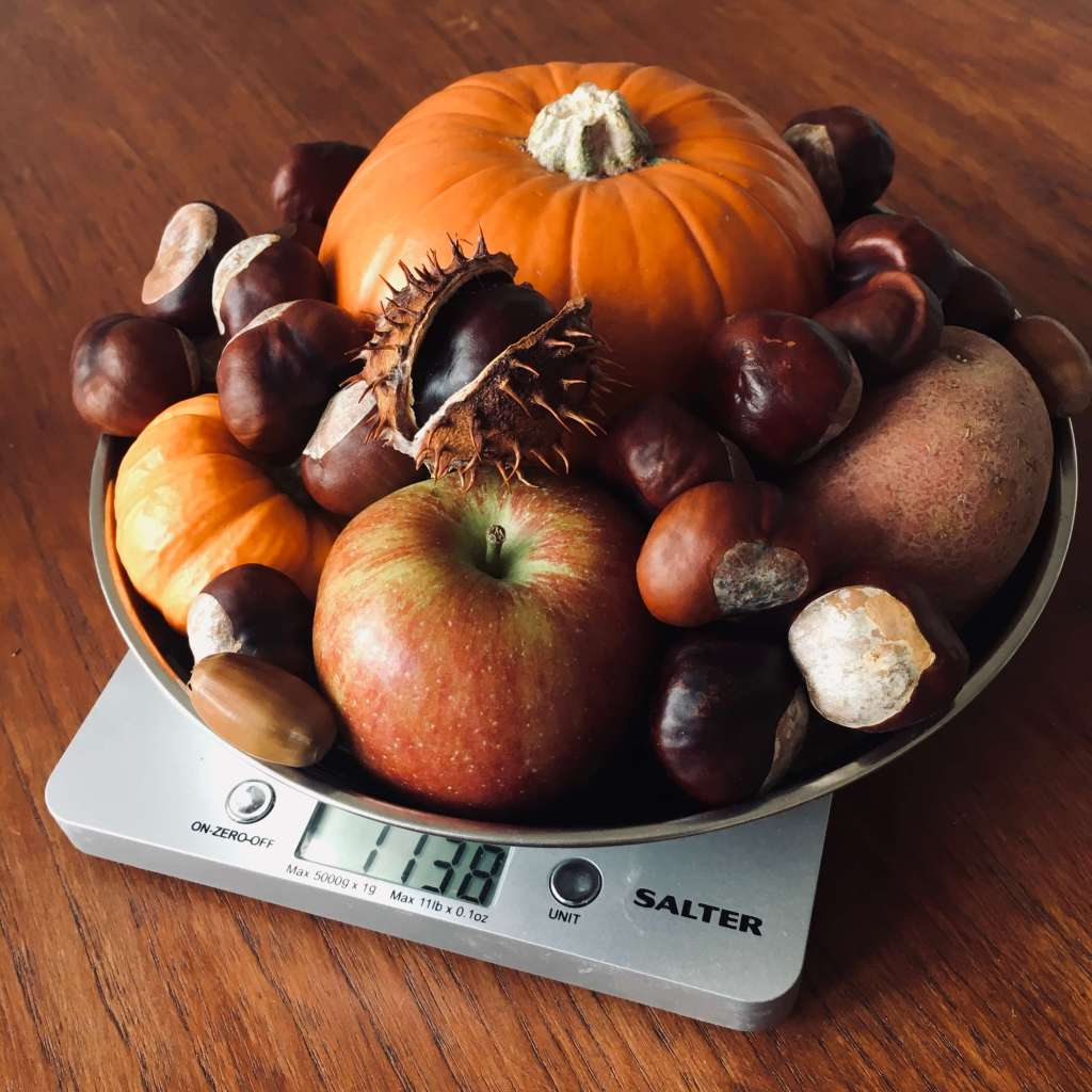 A set of digital weighing scales, with the scale basket filled with large and small pumpkins, conkers, acrons, apples and a potato