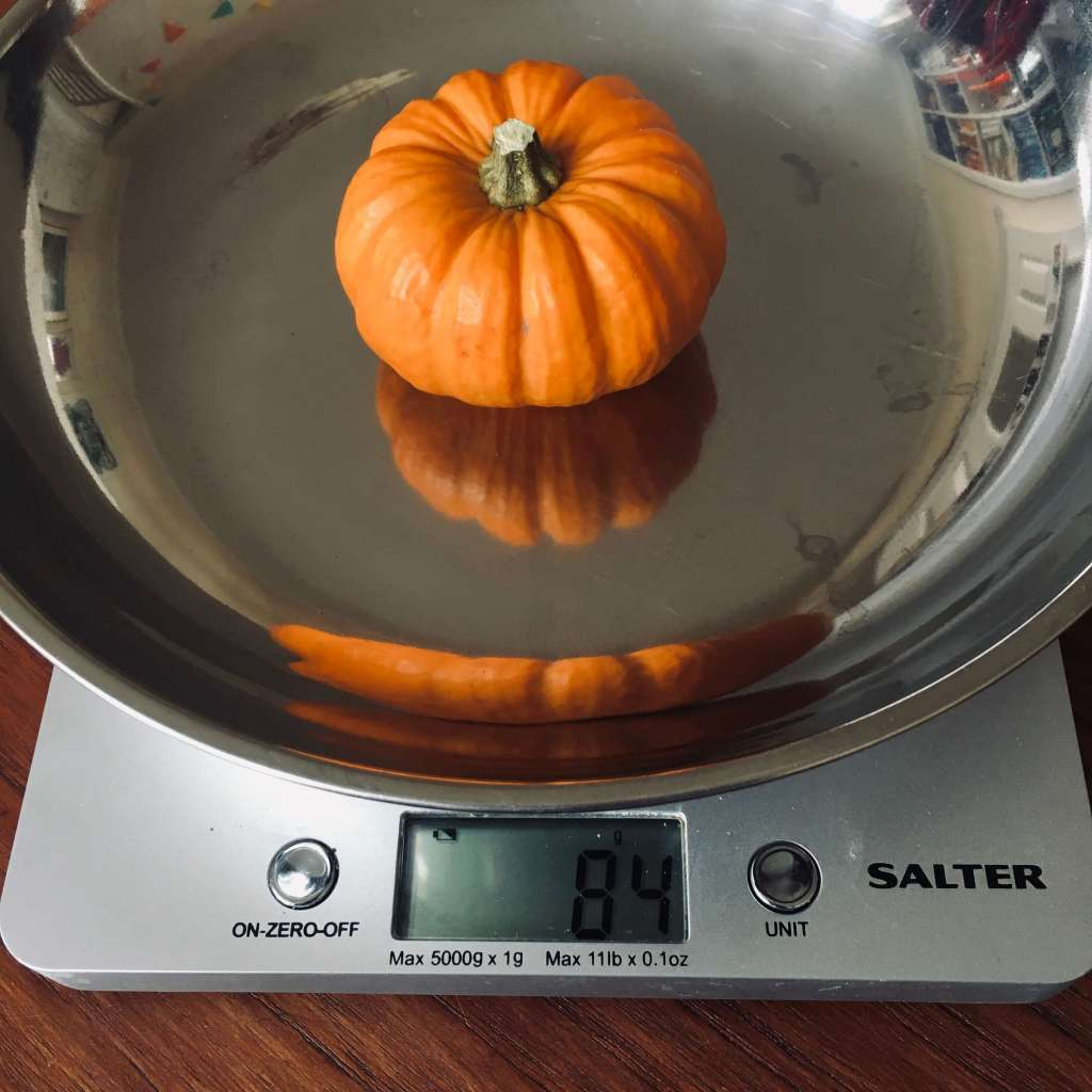A mini pumpkin on a set of weighing scales
