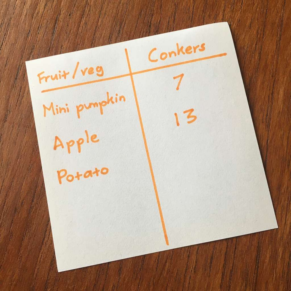 A list showing the weight of various items – a mini pumpkin, apple and potato – in comparative terms of how many conkers they are equal too.