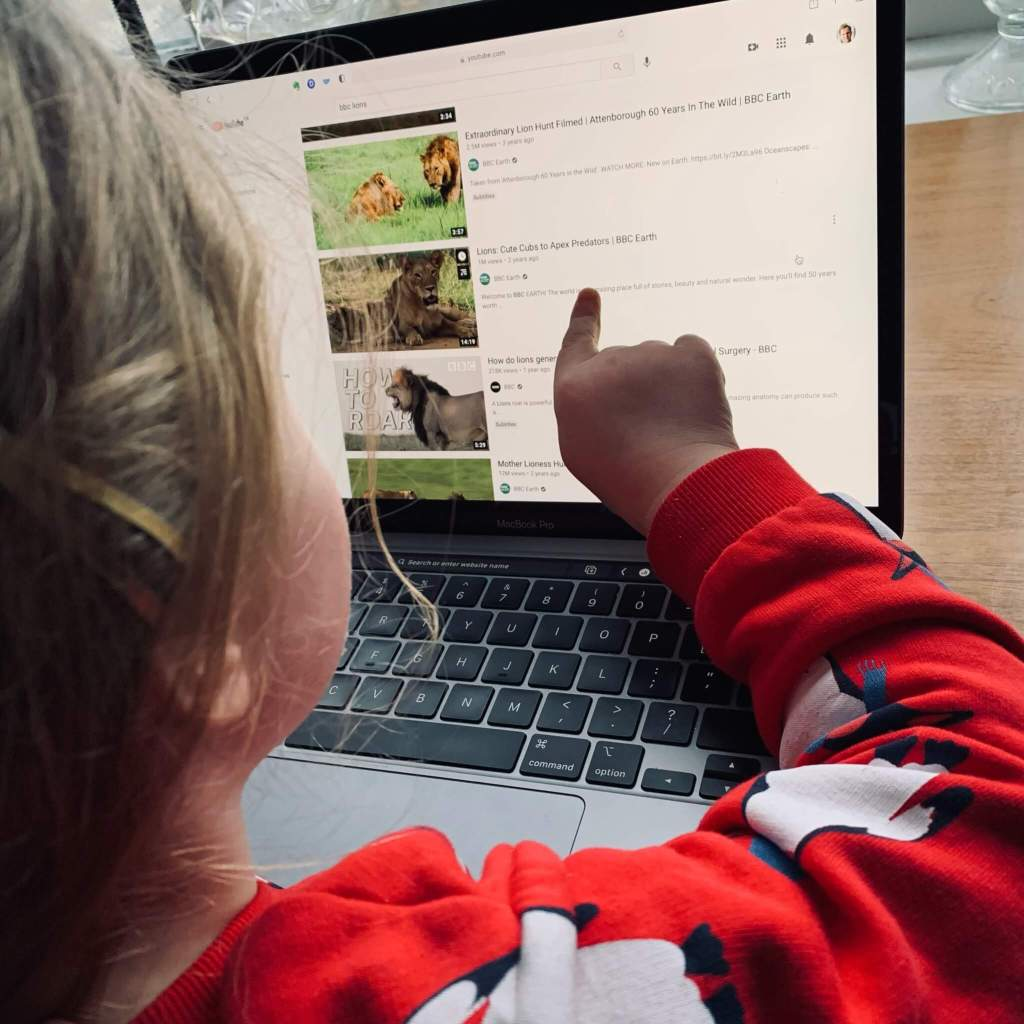 a preschool girl uses the internet under supervision to search for lion videos